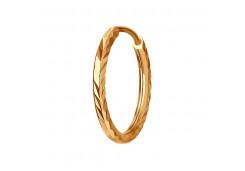 Золотая серьга конго